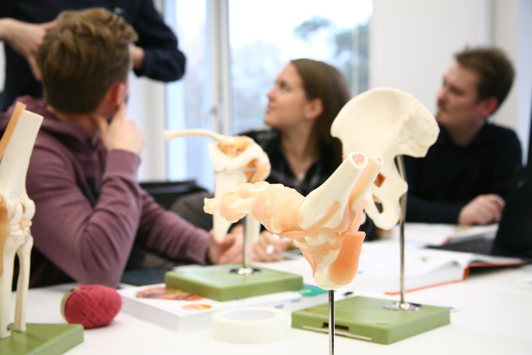 Anatomieunterricht der Medizinischen Fakultät