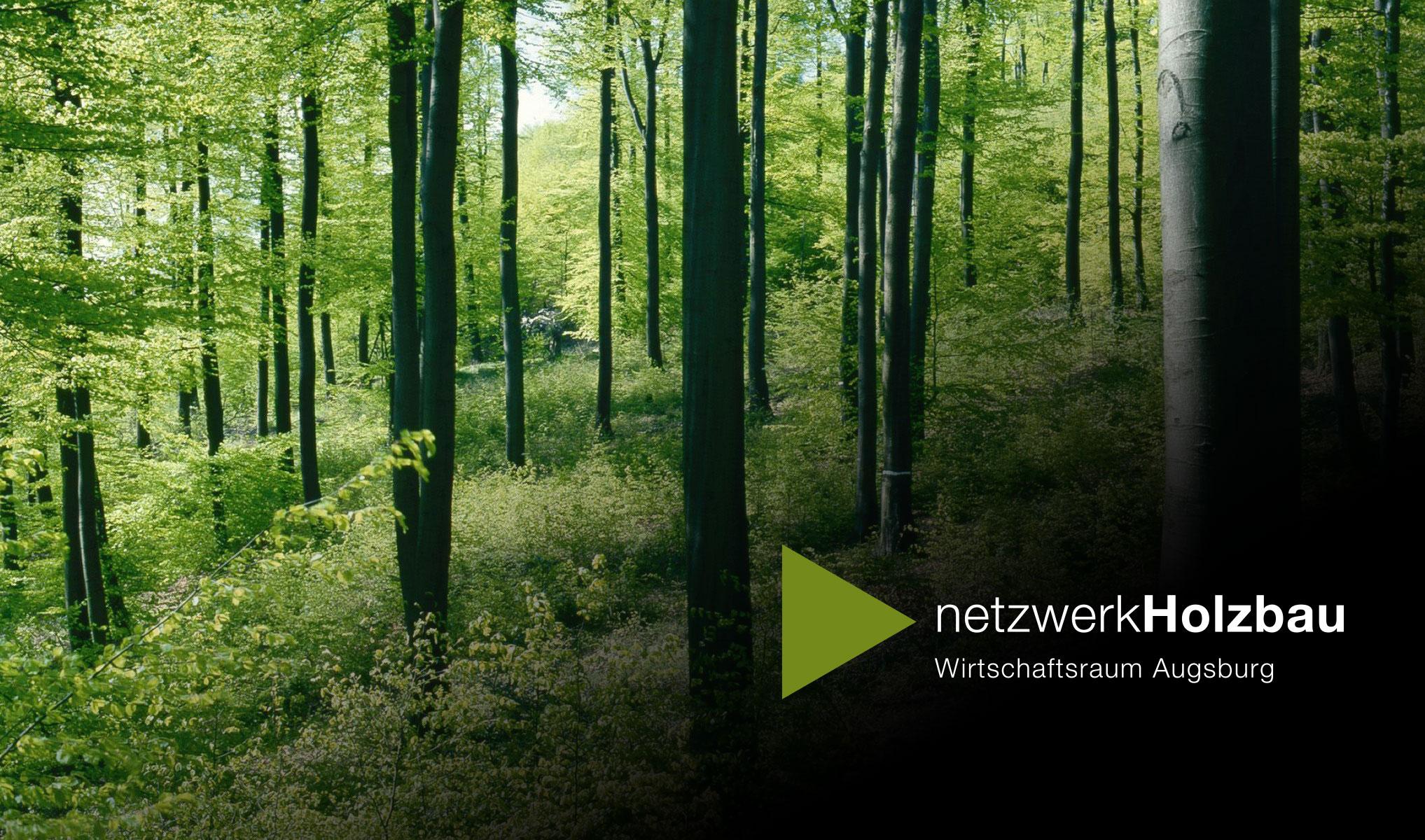 Wald mit Netzwerk Holzbau Logo