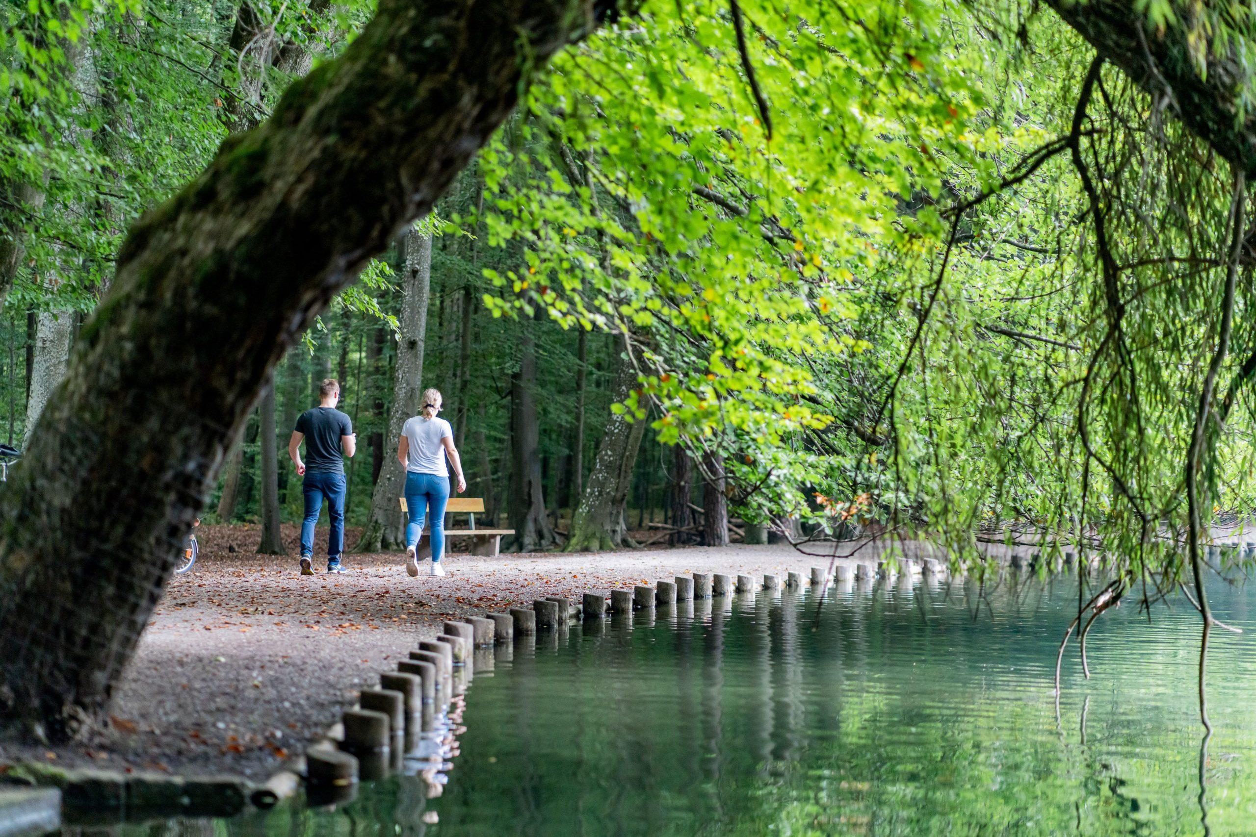 Am Stempflesee im Augsburger Siebentischwald, der nördliche Teil des Augsburger Stadtwalds